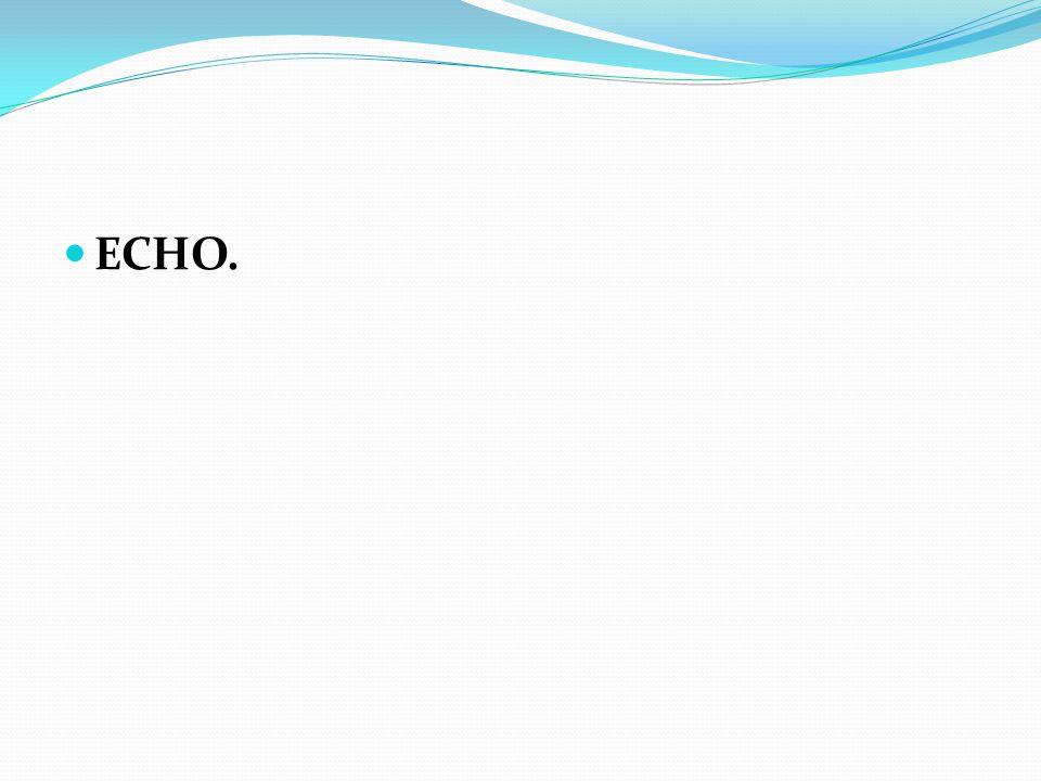 ECHO.