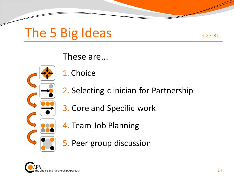 The 5 Big Ideas p 27-31 These are... 1. Choice 2. Selecting clinician for Partnership 3. Core and Specific work 4. Team Job Planning 5. Peer group dis