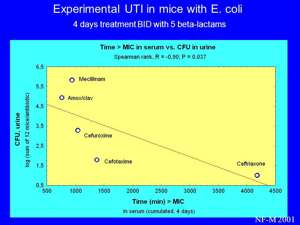Experimental UTI in mice with E. coli 4 days treatment BID with 5 beta-lactams NF-M 2001