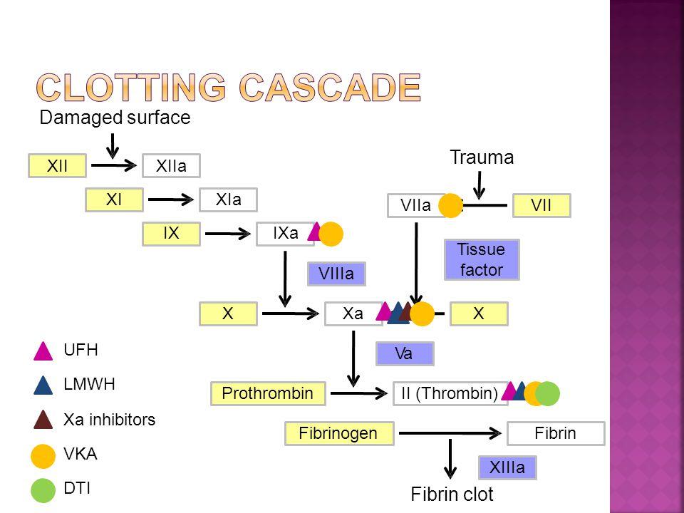 Damaged surface XIIXIIa XIXIa IXIXa XXaX ProthrombinII (Thrombin) FibrinogenFibrin VIIIa Va VIIaVII Trauma Fibrin clot Tissue factor XIIIa UFH LMWH Xa inhibitors VKA DTI
