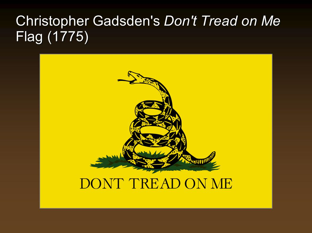 Christopher Gadsden's Don't Tread on Me Flag (1775)