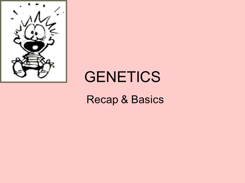 GENETICS Recap & Basics