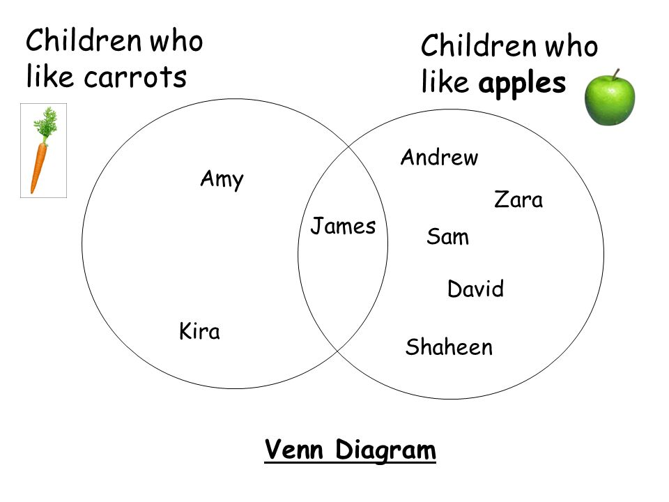 Children ParrotDogGoldfishRabbitCat Sally√ James√ Ismail√ Kira√ Simba√ Ali√ A table to show Class 11's favourite pets