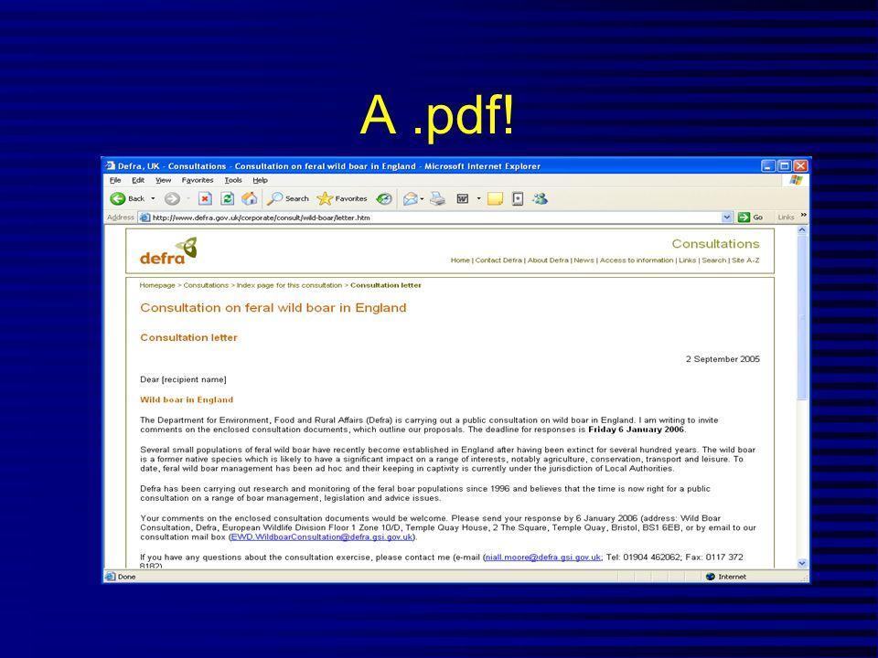 A.pdf!