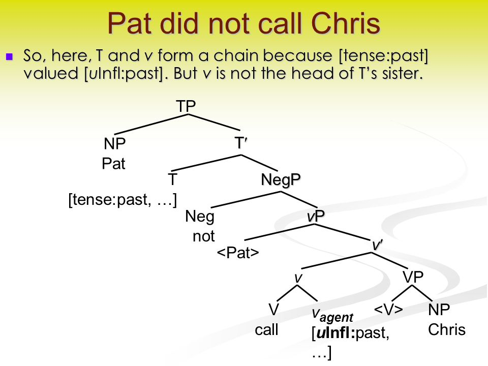 v Pat did not call Chris So, here, T and v form a chain because [tense:past] valued [uInfl:past].