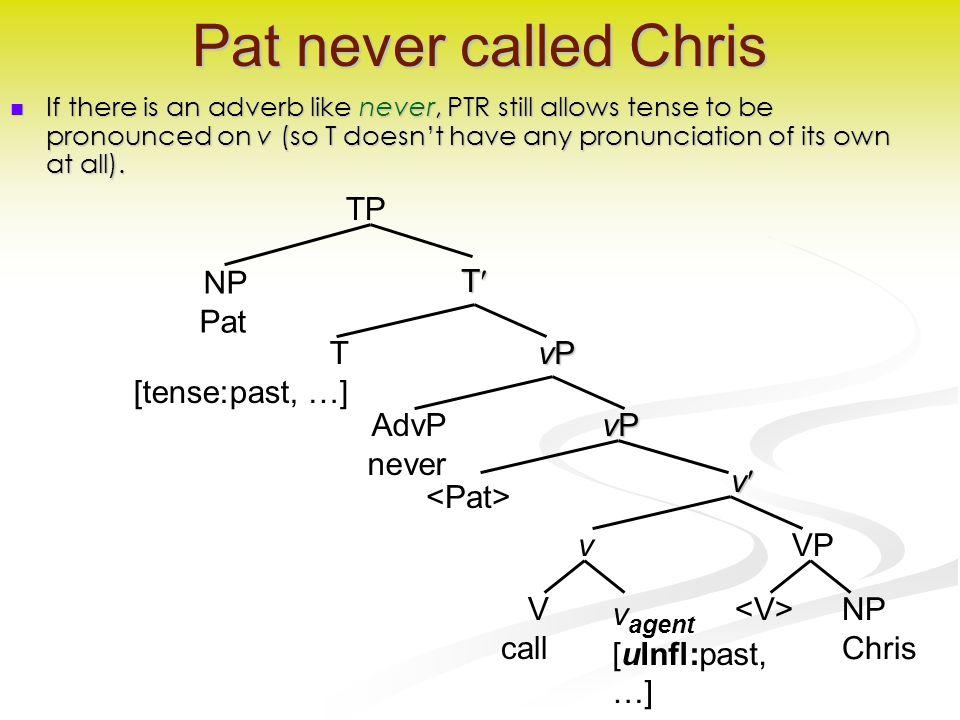 v Pat never called Chris If there is an adverb like never, PTR still allows tense to be pronounced on v (so T doesn't have any pronunciation of its own at all).