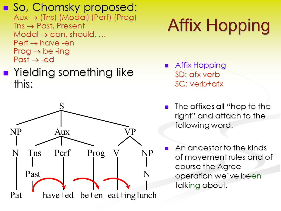 Affix Hopping So, Chomsky proposed: Aux  (Tns) (Modal) (Perf) (Prog) Tns  Past, Present Modal  can, should, … Perf  have -en Prog  be -ing Past  -ed So, Chomsky proposed: Aux  (Tns) (Modal) (Perf) (Prog) Tns  Past, Present Modal  can, should, … Perf  have -en Prog  be -ing Past  -ed Yielding something like this: Yielding something like this: Affix Hopping SD: afx verb SC: verb+afx The affixes all hop to the right and attach to the following word.