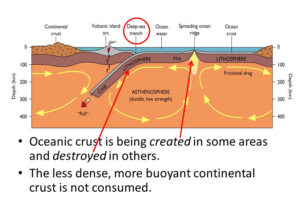Oceanic crust is being created in some areas and destroyed in others. The less dense, more buoyant continental crust is not consumed.