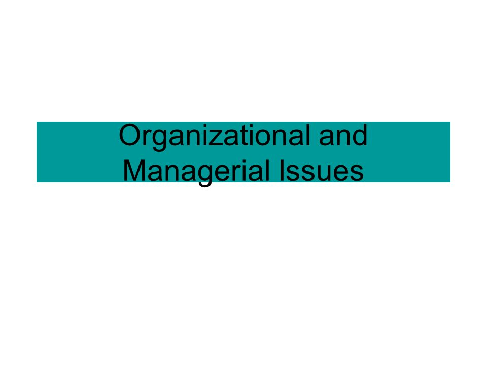 Organizational and Managerial Issues
