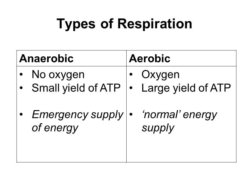 Anaerobic respiration glucose pyruvate carbon dioxide + ethanal ethanol lactic acid Yeast & plants Animals