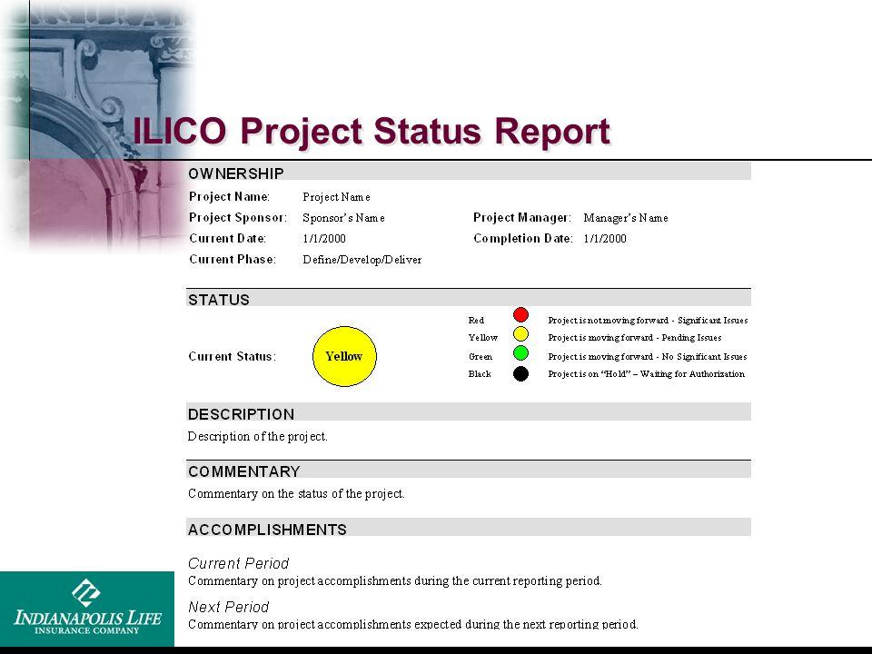 ILICO Project Status Report