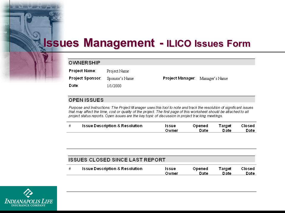 Issues Management - ILICO Issues Form