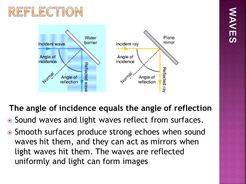 The angle of incidence equals the angle of reflection  Sound waves and light waves reflect from surfaces.