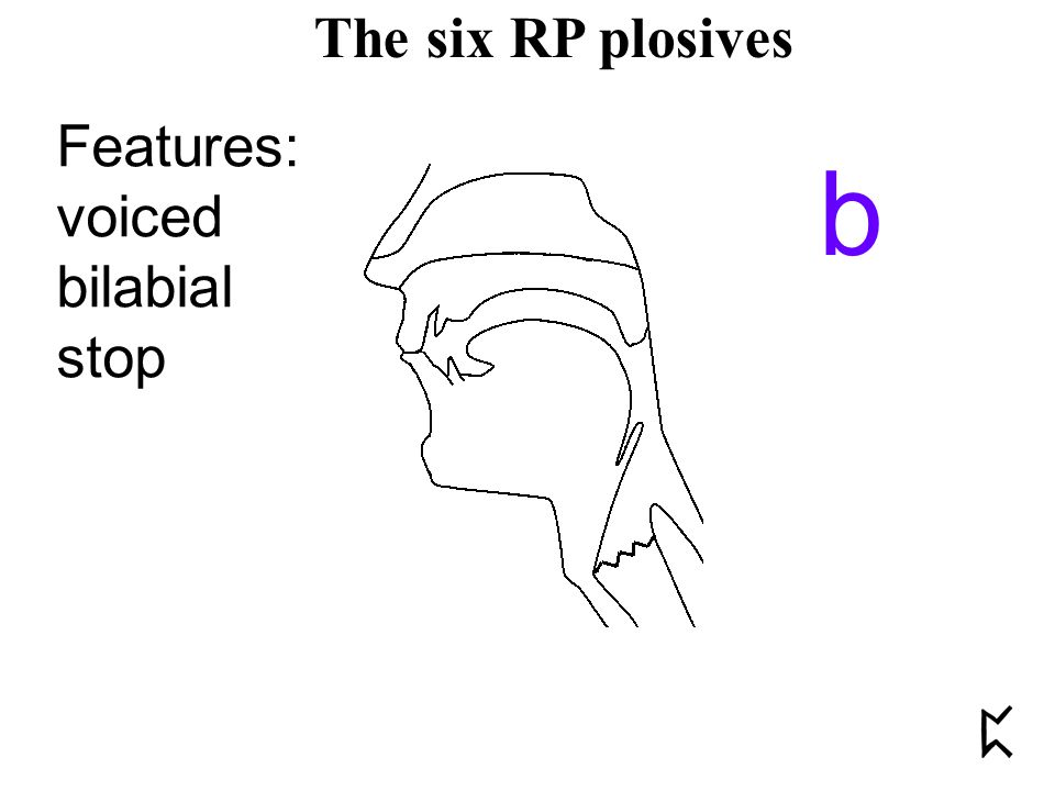 Features: voiced bilabial stop b The six RP plosives