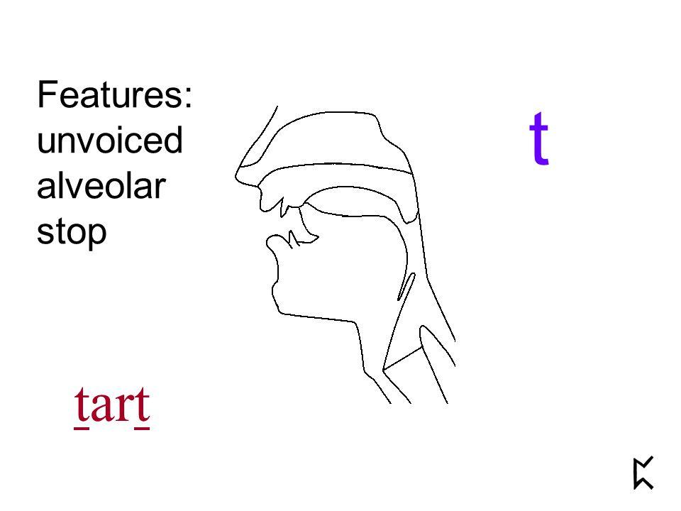 Features: unvoiced alveolar stop t tart