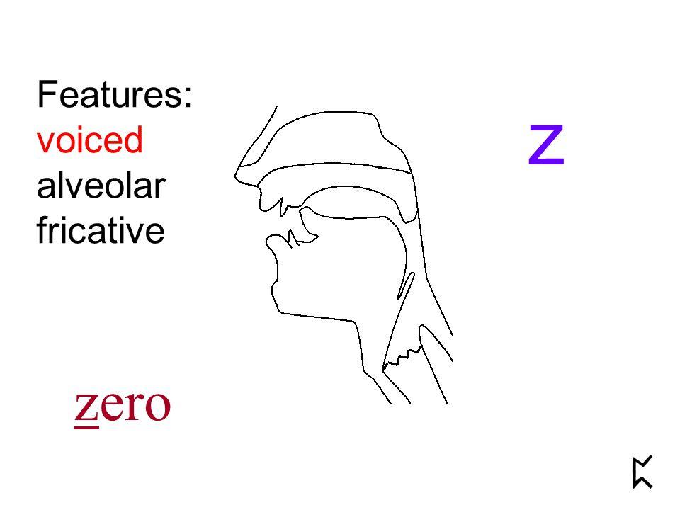 Features: voiced alveolar fricative z zero