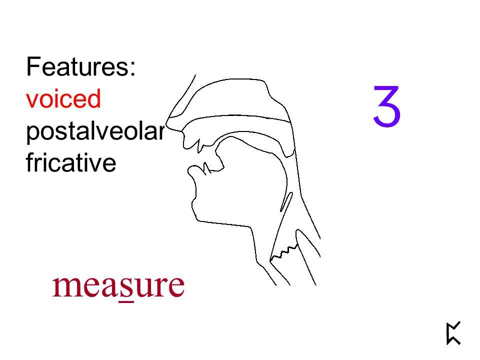 Features: voiced postalveolar fricative measure