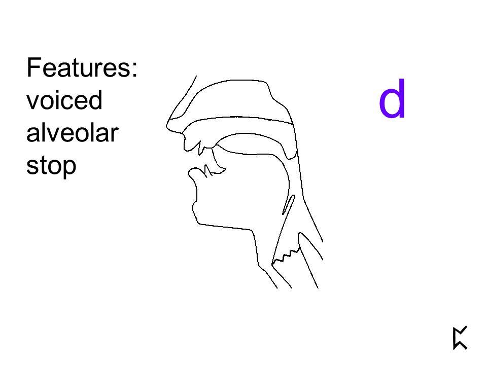 Features: voiced alveolar stop d