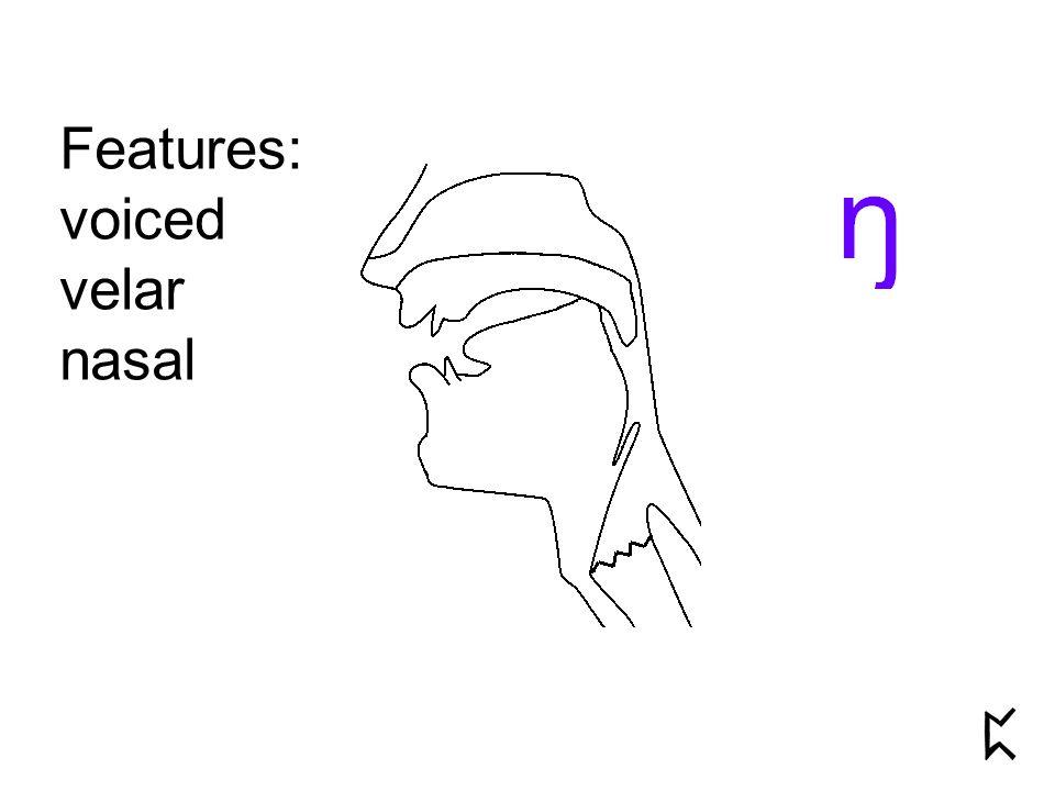Features: voiced velar nasal