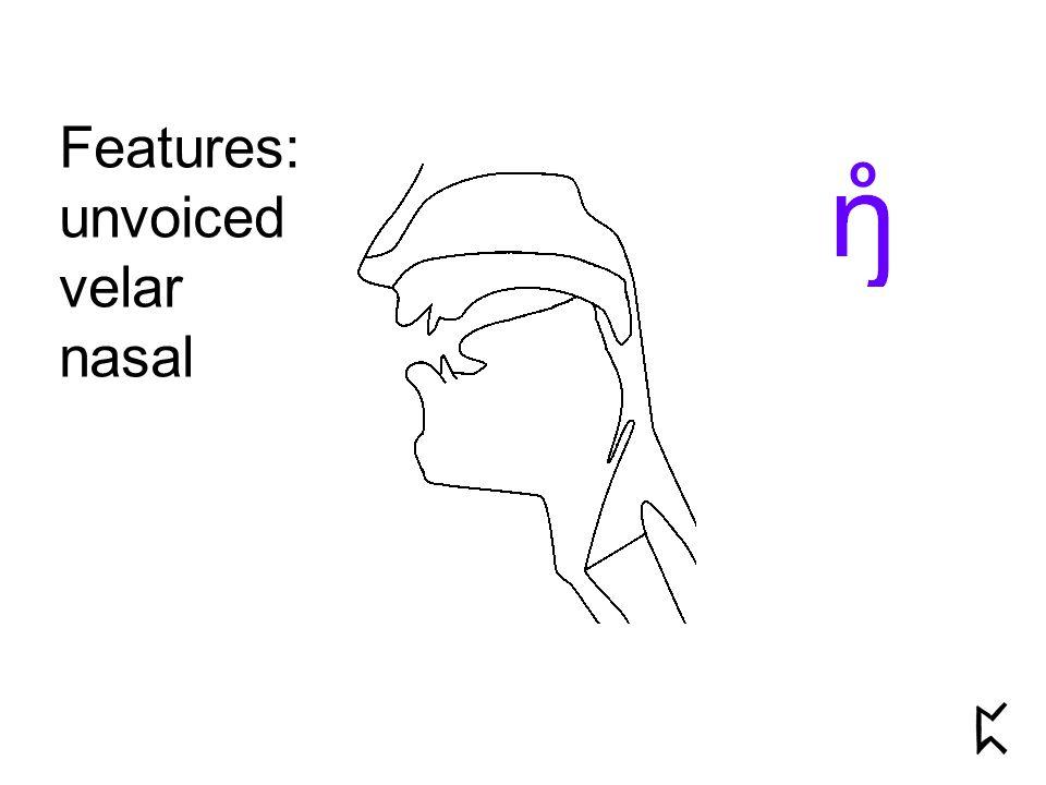 Features: unvoiced velar nasal o