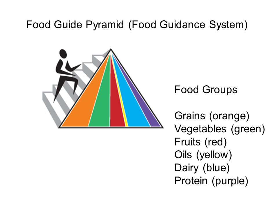 Food Guide Pyramid (Food Guidance System) Food Groups Grains (orange) Vegetables (green) Fruits (red) Oils (yellow) Dairy (blue) Protein (purple)