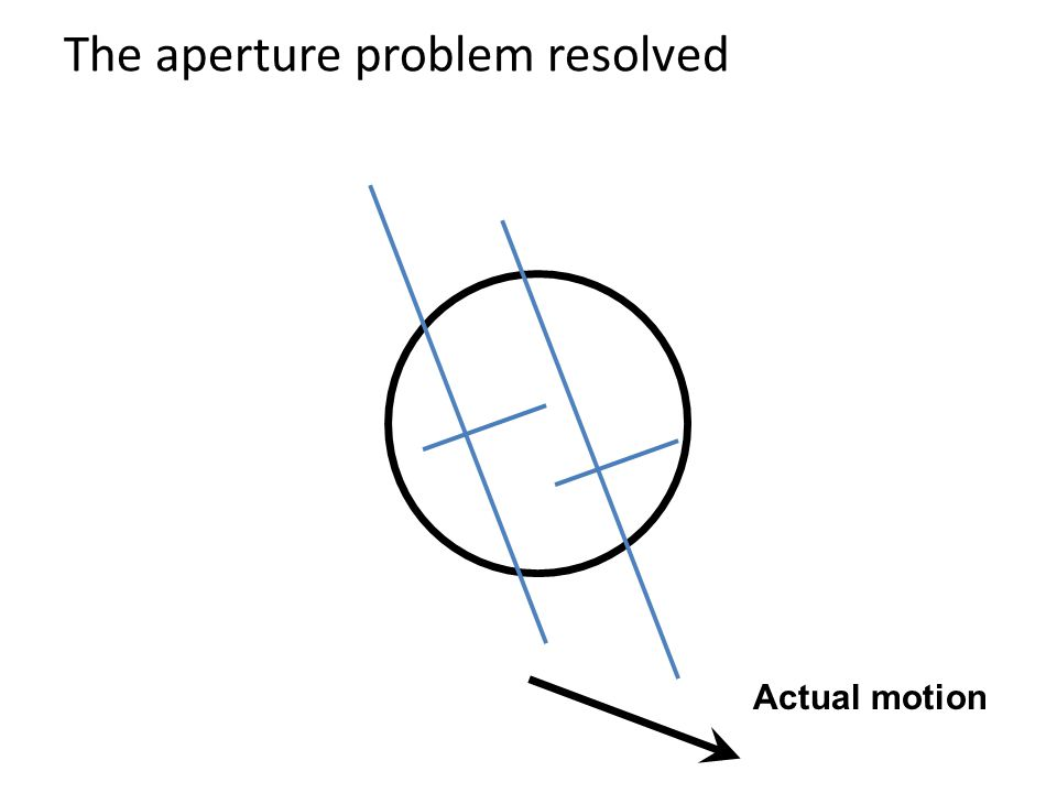 The aperture problem resolved Actual motion