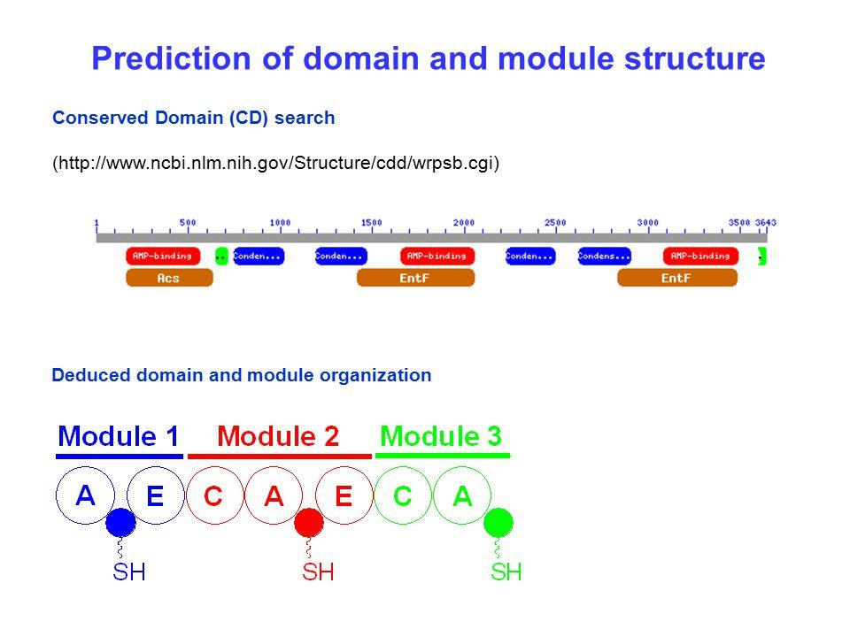 Prediction of domain and module structure Conserved Domain (CD) search (http://www.ncbi.nlm.nih.gov/Structure/cdd/wrpsb.cgi) Deduced domain and module organization