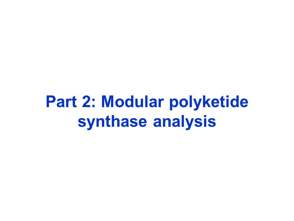 Part 2: Modular polyketide synthase analysis