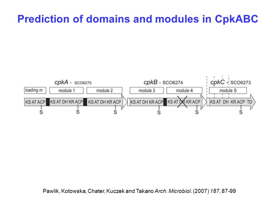 Prediction of domains and modules in CpkABC Pawlik, Kotowska, Chater, Kuczek and Takano Arch.