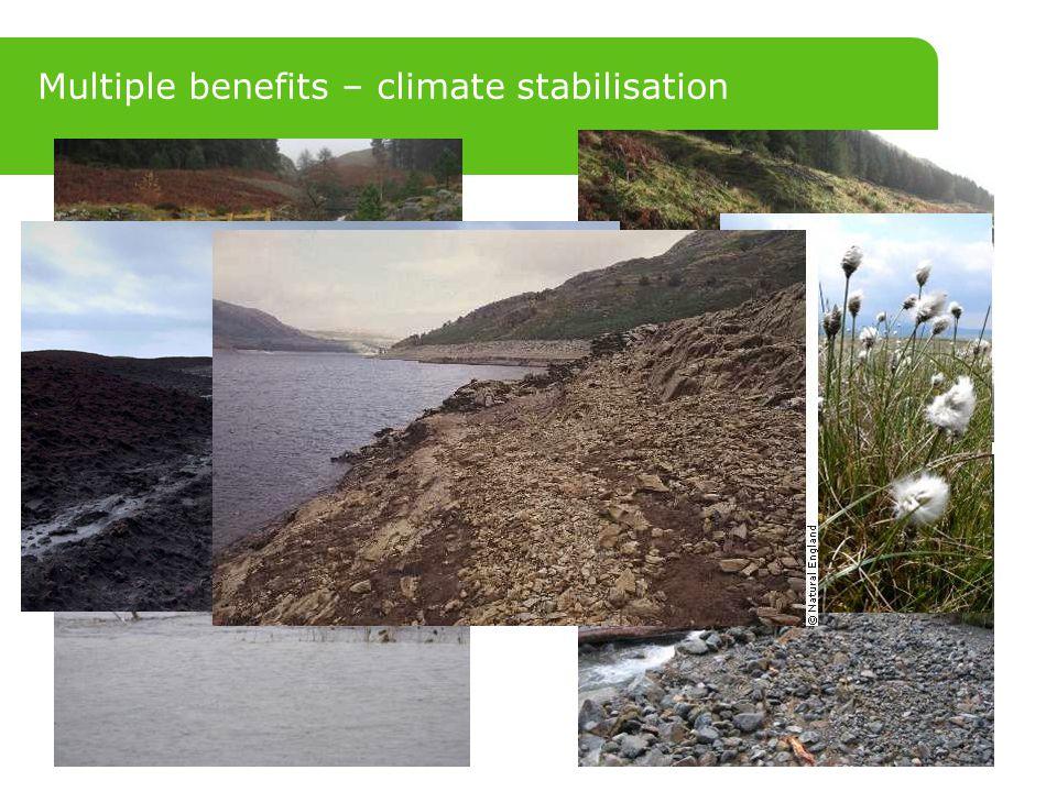 Multiple benefits – climate stabilisation