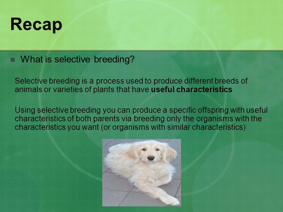 Recap What is cloning.