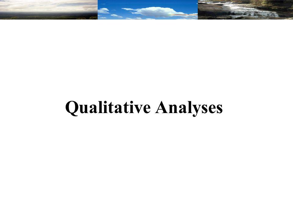 Qualitative Analyses
