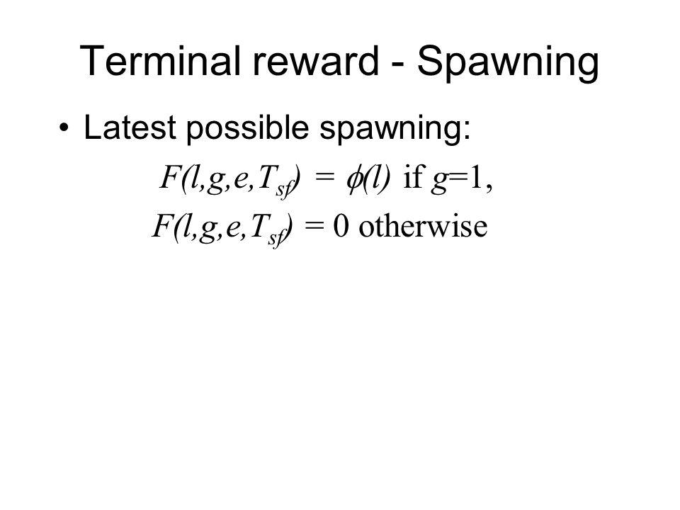 Terminal reward - Spawning Latest possible spawning: F(l,g,e,T sf ) =  (l) if g=1, F(l,g,e,T sf ) = 0 otherwise