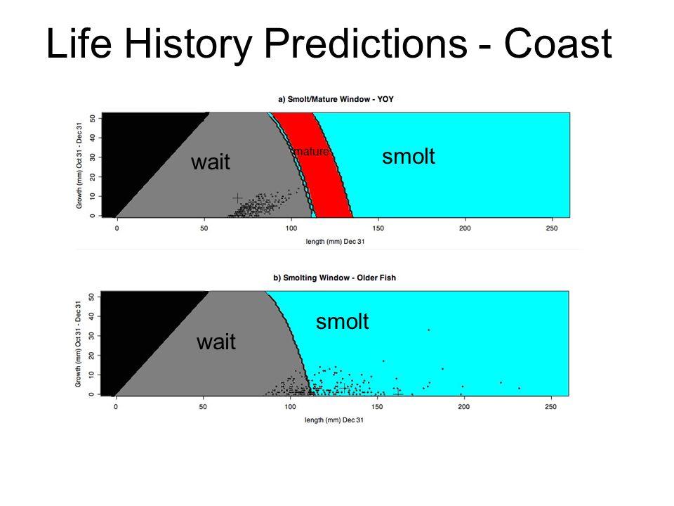 Life History Predictions - Coast smolt mature wait