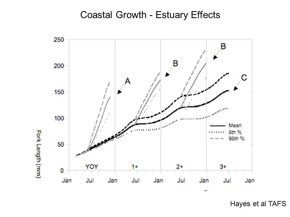 Hayes et al TAFS Coastal Growth - Estuary Effects