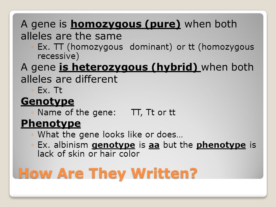 How Are They Written. A gene is homozygous (pure) when both alleles are the same ◦Ex.