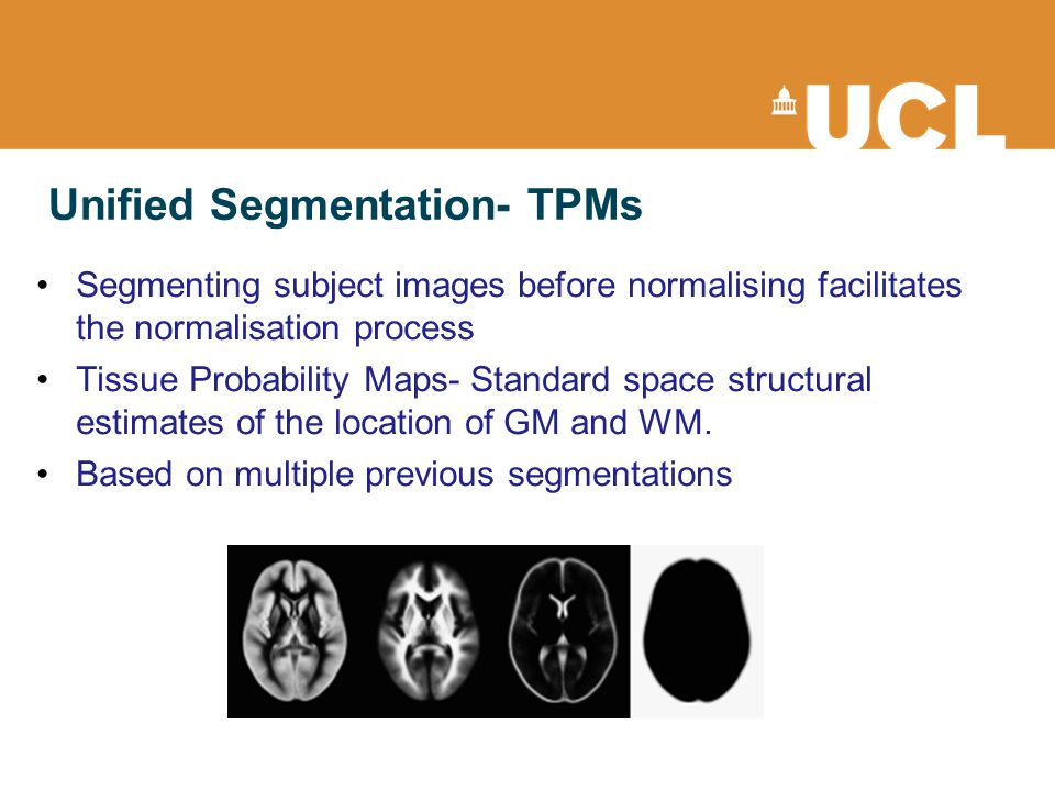 Unified Segmentation- TPMs Segmenting subject images before normalising facilitates the normalisation process Tissue Probability Maps- Standard space