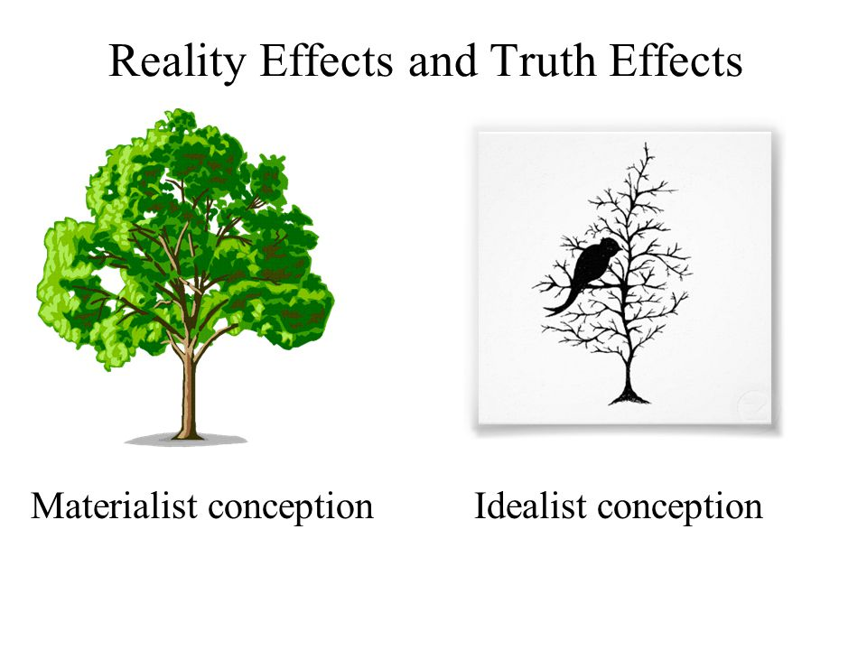 Reality Effects and Truth Effects Materialist conception Idealist conception