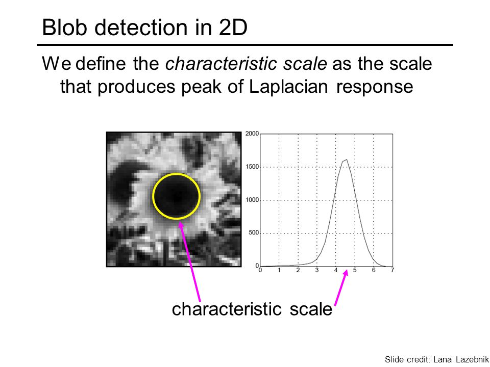 Blob detection in 2D We define the characteristic scale as the scale that produces peak of Laplacian response characteristic scale Slide credit: Lana Lazebnik