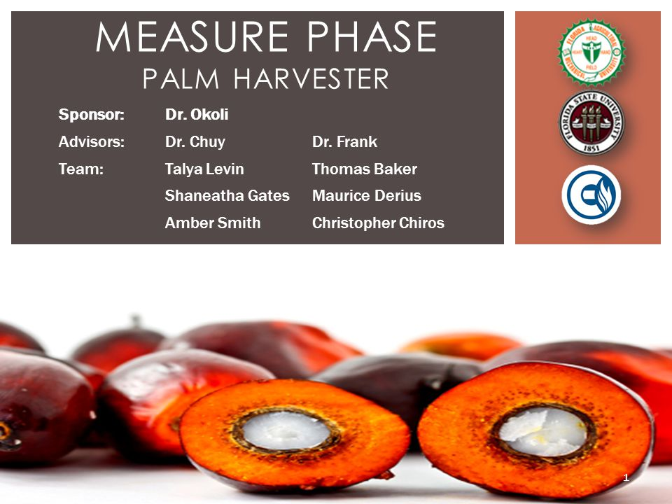 MEASURE PHASE PALM HARVESTER Sponsor:Dr. Okoli Advisors:Dr.