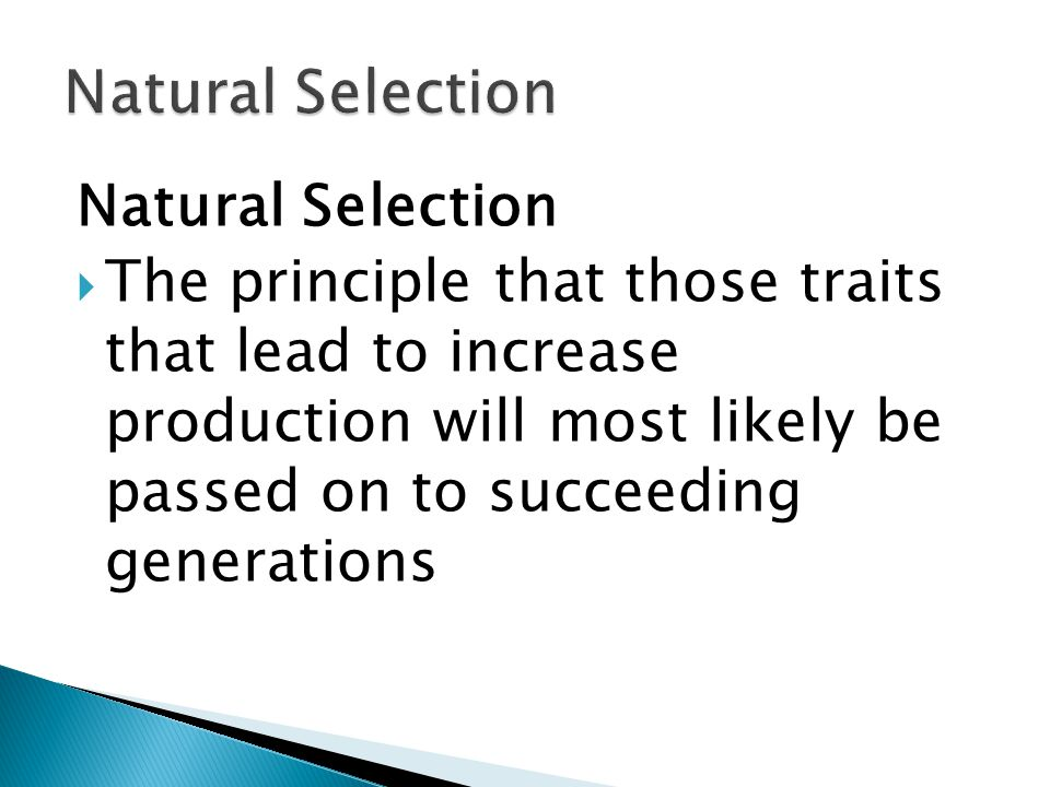 Natural Selection  The principle that those traits that lead to increase production will most likely be passed on to succeeding generations