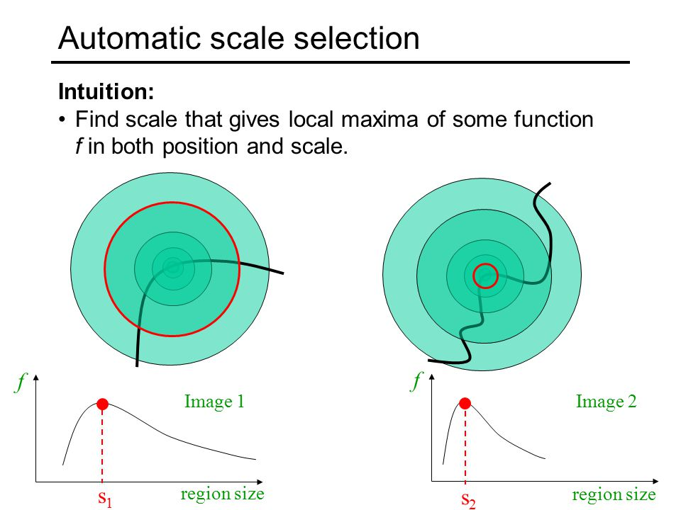 Automatic scale selection Intuition: Find scale that gives local maxima of some function f in both position and scale.