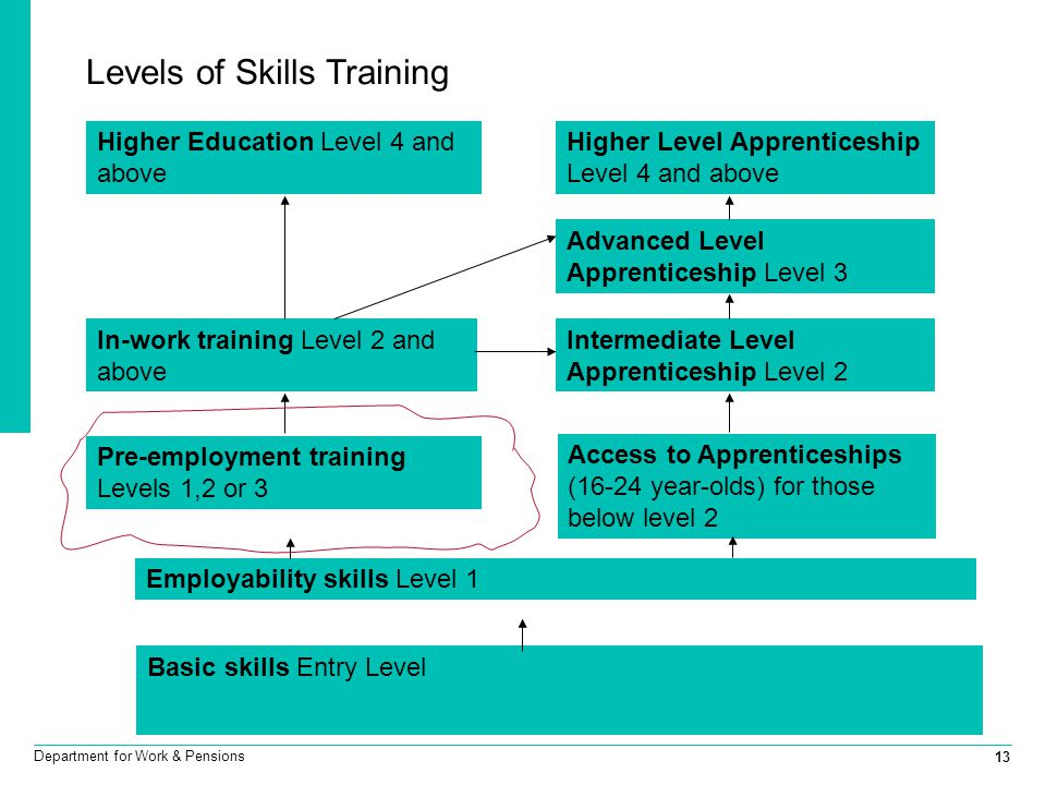 13 Department for Work & Pensions Levels of Skills Training Access to Apprenticeships (16-24 year-olds) for those below level 2 Intermediate Level App