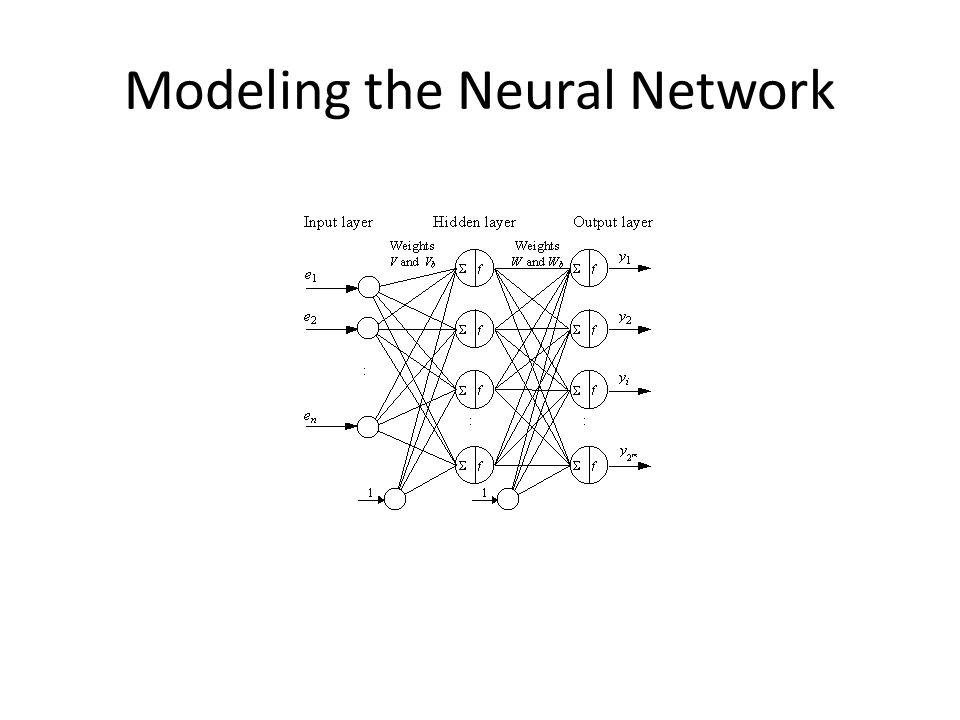 Modeling the Neural Network