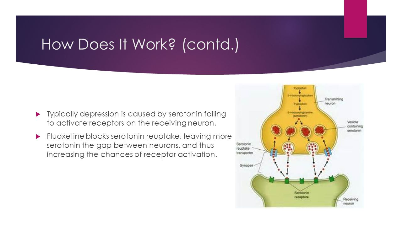 How Does It Work? (contd.)  Typically depression is caused by serotonin failing to activate receptors on the receiving neuron.  Fluoxetine blocks se