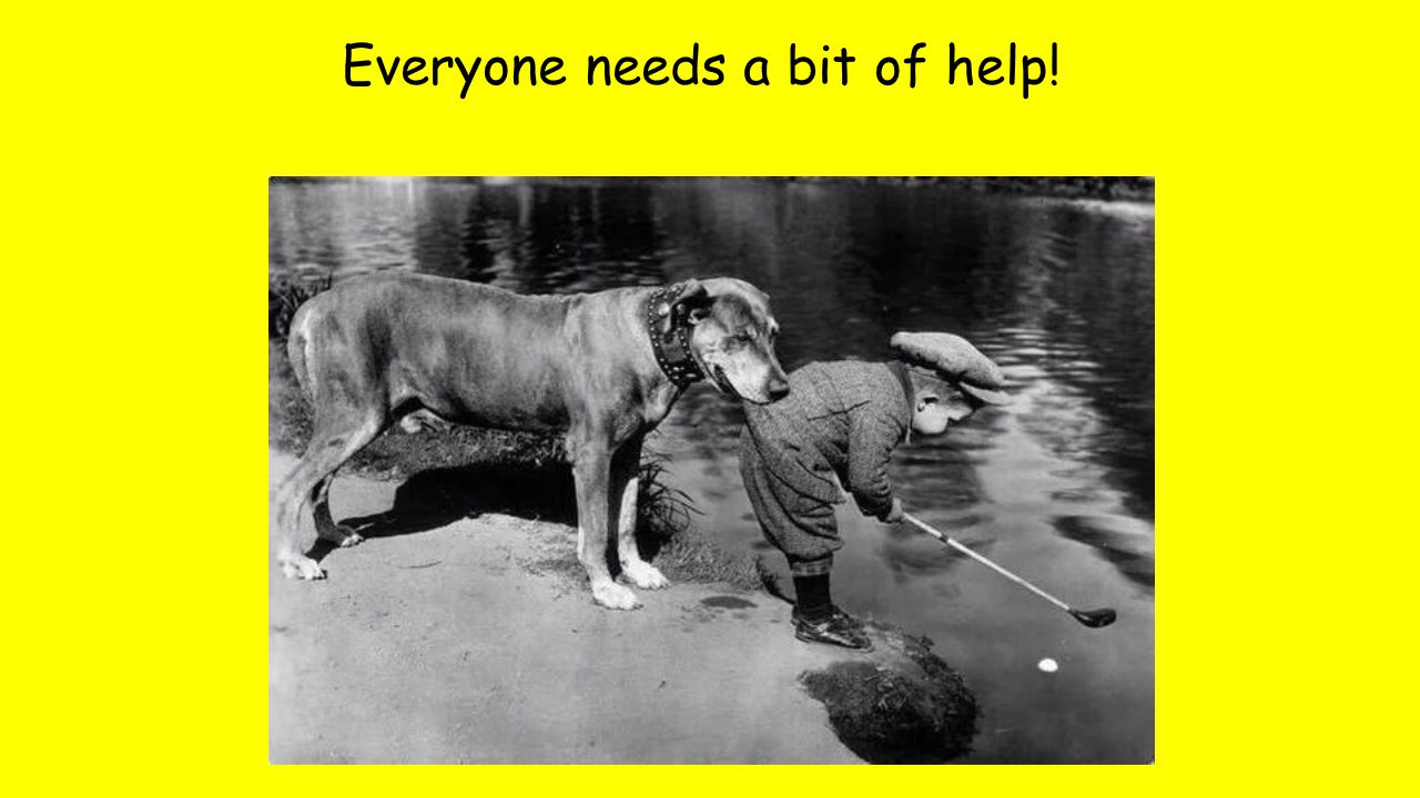 Everyone needs a bit of help!
