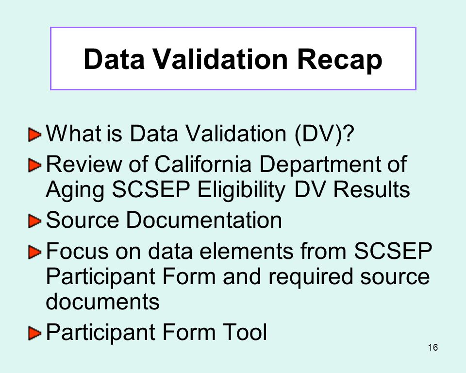 15 Data Elements with the Most Source Document Issues SCSEP Participant Form (rev.3/09) Homeless (P8) Number in Family (P11) Total Includable Family Income (P14) Low Literacy Skills (P24) Veteran (P25) Disability (P26) At Risk for Homelessness (P27) Failed to Find Employment After Using WIA Title I (P29) Low Employment Prospects (P30)