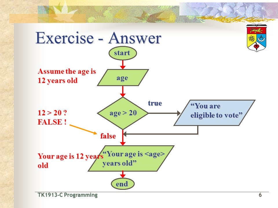 """TK1913-C Programming6 TK1913-C Programming 6 Exercise - Answer true false """"You are eligible to vote"""" agestartend """"Your age is years old"""" age > 20 true"""