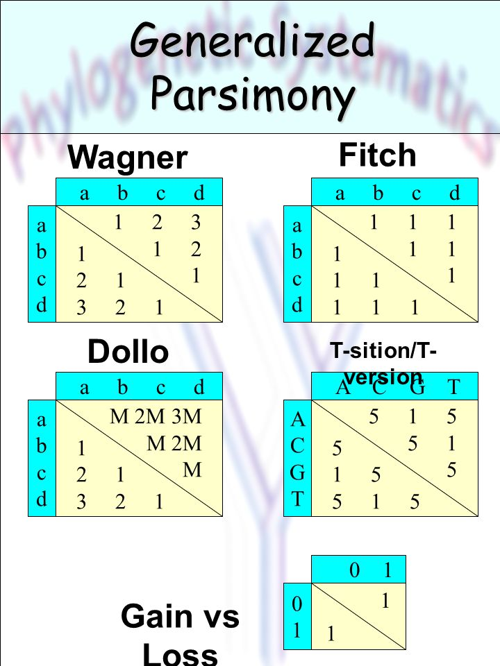 Generalized Parsimony 1 2 3 1 2 1 a b c d abcdabcd 1 2 1 3 2 1 Wagner 1 1 1 1 a b c d abcdabcd 1 1 1 1 Fitch M 2M 3M M 2M M a b c d abcdabcd 1 2 1 3 2