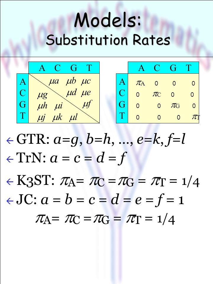 Models: Substitution Rates ß GTR: a=g, b=h, …, e=k, f=l ß TrN: a = c = d = f  K3ST:  A =  C =  G =  T = 1/4  JC: a = b = c = d = e = f = 1  A =